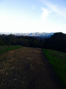 westwood view 2