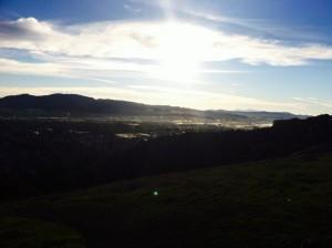 westwood view
