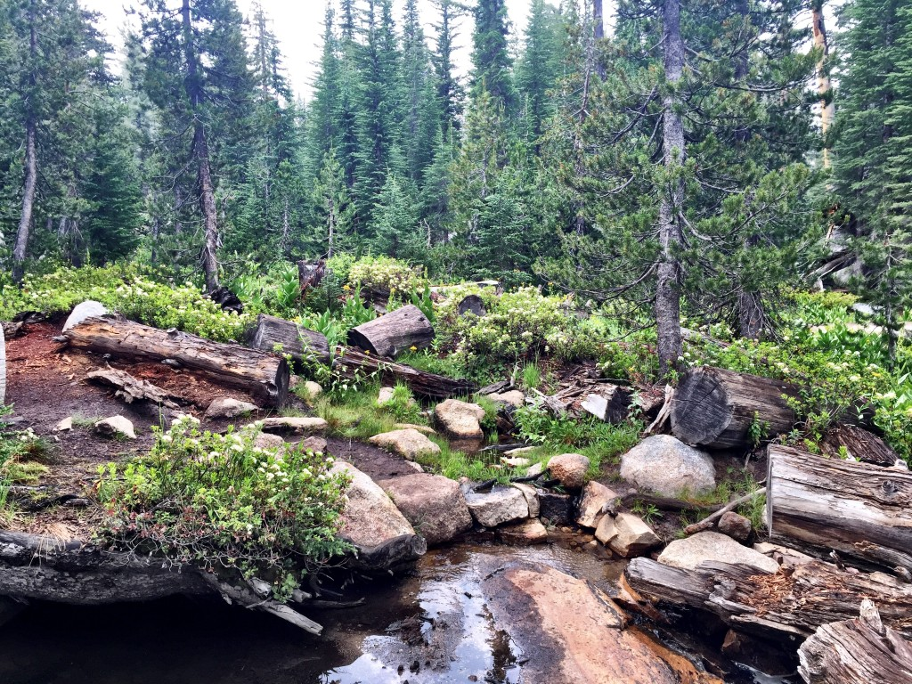 Clouds Rest Trail